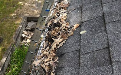 8 Signs It's Time to Clean Your Gutter