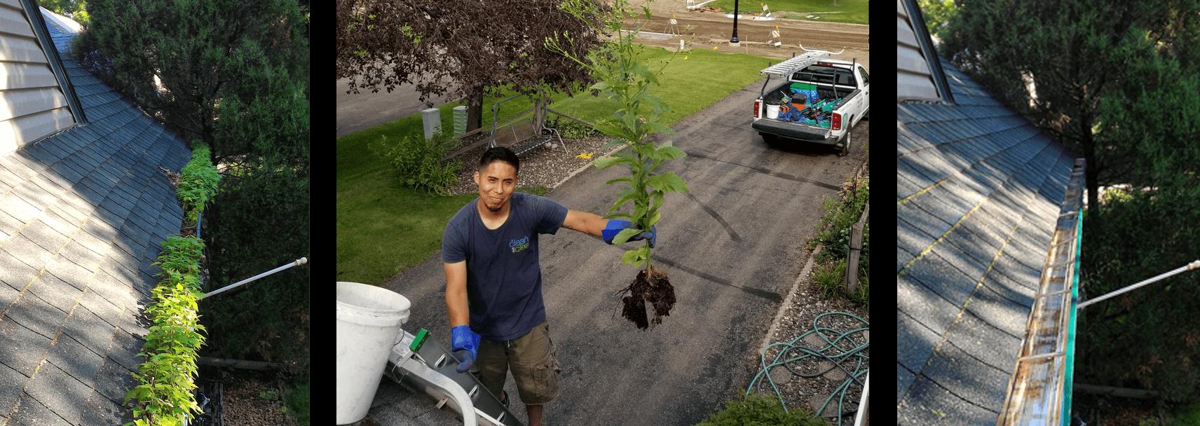 Gutter Cleaning Minneapolis, St. Paul MN