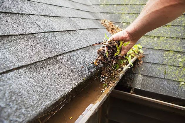 gutter guard cleaning