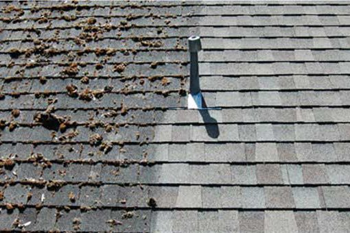 clean and clear roof cleaning